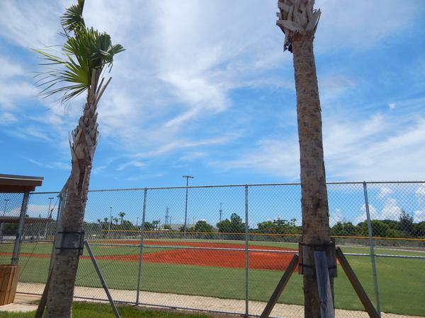 Sports Field 2.JPG