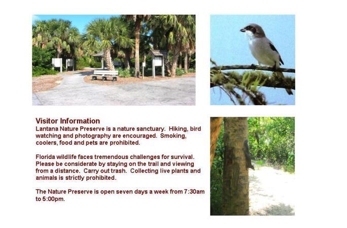 nature p pg2 1.jpg